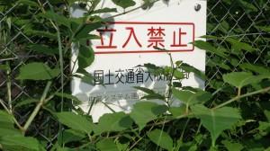桑谷山009